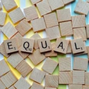 plans égalité entreprises